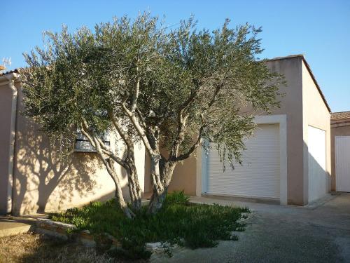 A garden outside Holiday Home Villa des Faisses