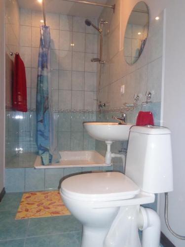 A bathroom at Brīvdienu māja Audas