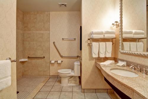 A bathroom at Hilton Garden Inn Ottawa Airport