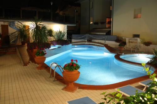 Piscina di Hotel Donatella Pinarella o nelle vicinanze