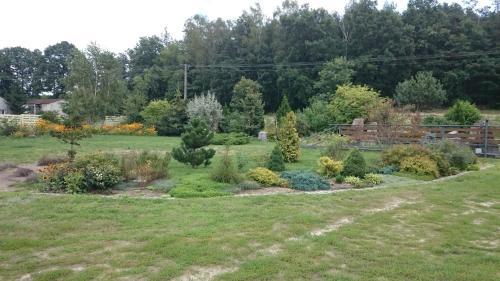 Ogród w obiekcie Modrzewiowa Chata