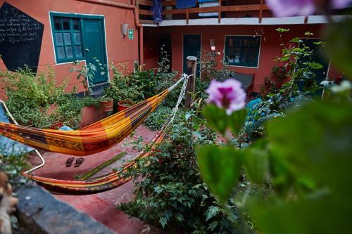 Terrasse ou espace extérieur de l'établissement Backpacker La Bo'M