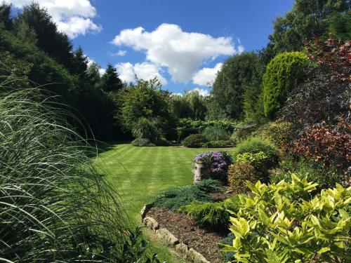 A garden outside Beechwood B and B