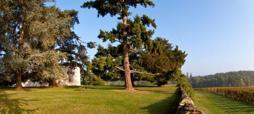 Les Secrets Chateau Pey La Tour Salleboeuf, France