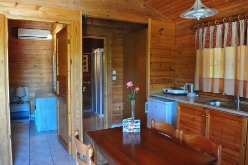 Een keuken of kitchenette bij Sandy's Studios Apartments & Log-Villas