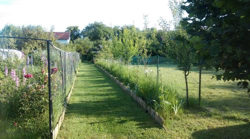 Jardin de l'établissement Farm stay Lackovic
