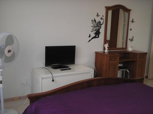 Телевизор и/или развлекательный центр в Apartment Your welcome
