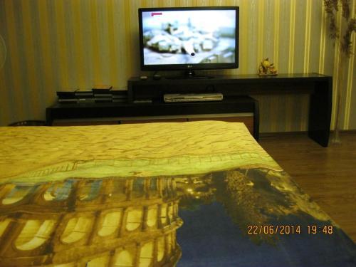 A television and/or entertainment center at Apartments on Velizhskaya ulitsa
