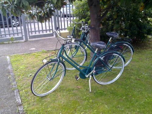 Biking at or in the surroundings of Residence Viale Venezia