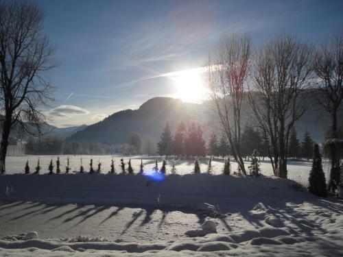 Pension Rainhof during the winter