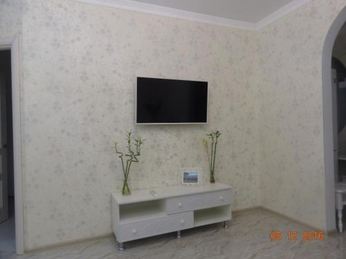 Телевизор и/или развлекательный центр в Apartment at Tsyurupy 32