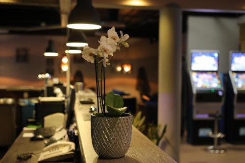 En restaurang eller annat matställe på Hotel Nukkumatti