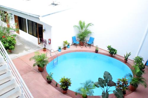 The swimming pool at or near Hotel Jungle House