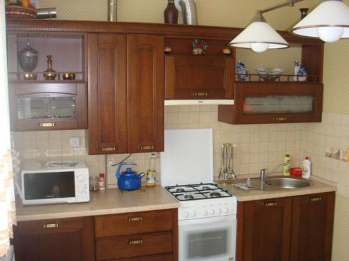 A kitchen or kitchenette at Apartments at Potemkina 13