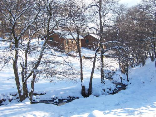 Les Feuillantines during the winter