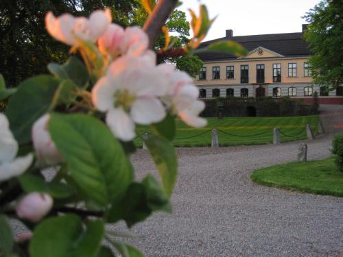 En trädgård utanför Runnvikens Pensionat
