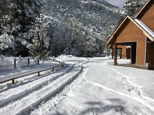 Condominio Bosque Queule during the winter