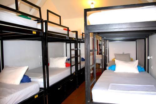 Un ou plusieurs lits superposés dans un hébergement de l'établissement Top Banana Guesthouse & Rooftop Bar