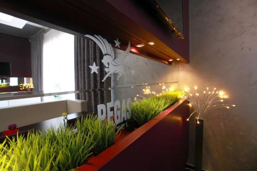 Балкон или терраса в Отель Пегас