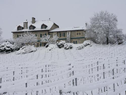 L'établissement Domaine de Châteauvieux en hiver