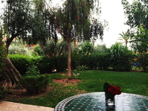 A garden outside Rez De Jardin Palmeraie 2