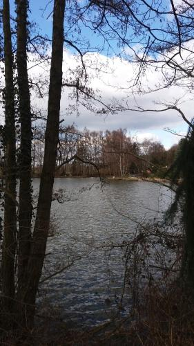 L'établissement Ferienpark Tannenbruchsee en hiver