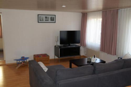 TV/Unterhaltungsangebot in der Unterkunft Villa Donkey Ferienwohnung