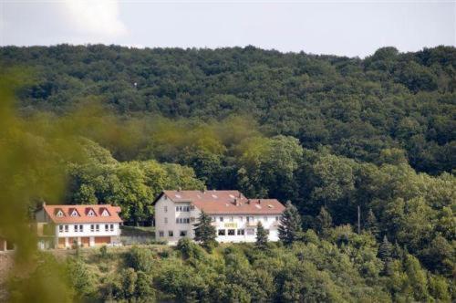 Blick auf Burg-Hotel aus der Vogelperspektive