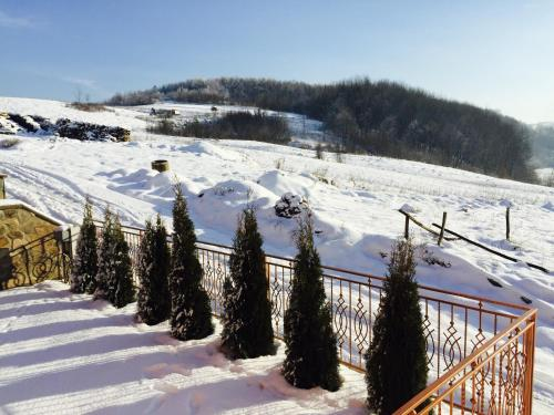Mini hotel Solnce Karpat during the winter