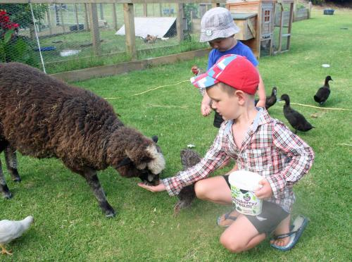 Children staying at Pukenui Holiday Park