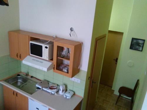 A kitchen or kitchenette at Apartma Františkovy Lázně