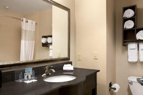 A bathroom at Hampton Inn & Suites - Mansfield
