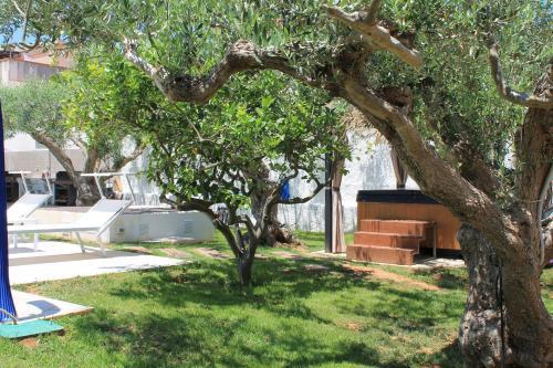 A garden outside Signorino Resort