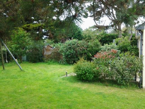 A garden outside Jervl