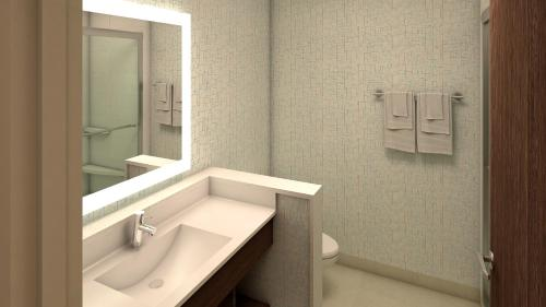 A bathroom at Holiday Inn Express & Suites - Chadron
