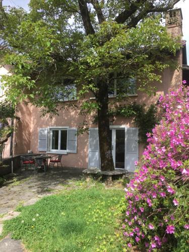 Ein Garten an der Unterkunft Casa Monttruc