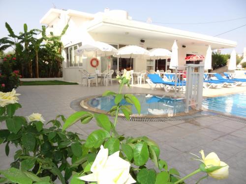 Der Swimmingpool an oder in der Nähe von Michalis Studios & Apartments