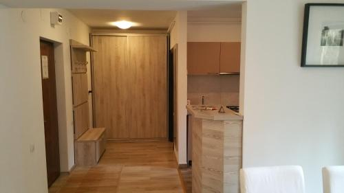 A kitchen or kitchenette at Apartament Aosta Sinaia
