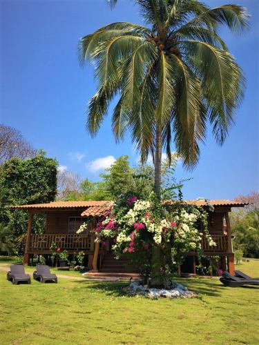 Jardín al aire libre en Hotel Casa Cambutal