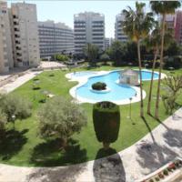 Jardin del Mar Playa Muchavista - El Campello - Alicante