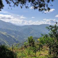 Lime Tree Farm, Blue Mountains