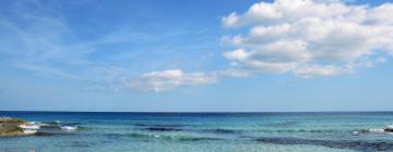 Hotels in Playa Migjorn