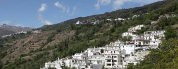 Hotels in Capileira