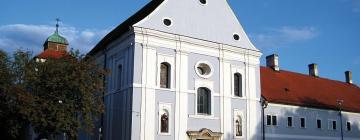 Отели в городе Славонски-Брод