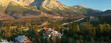 Penzióny v Tatranskej Lomnici