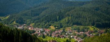 Hotels in Furtwangen