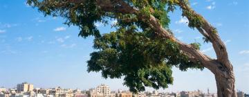 Hotels in Amman