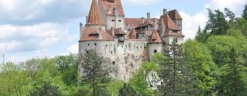 Hotels in Bran
