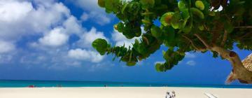 Hotels in Palm-Eagle Beach