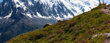 Hotels in Les Houches